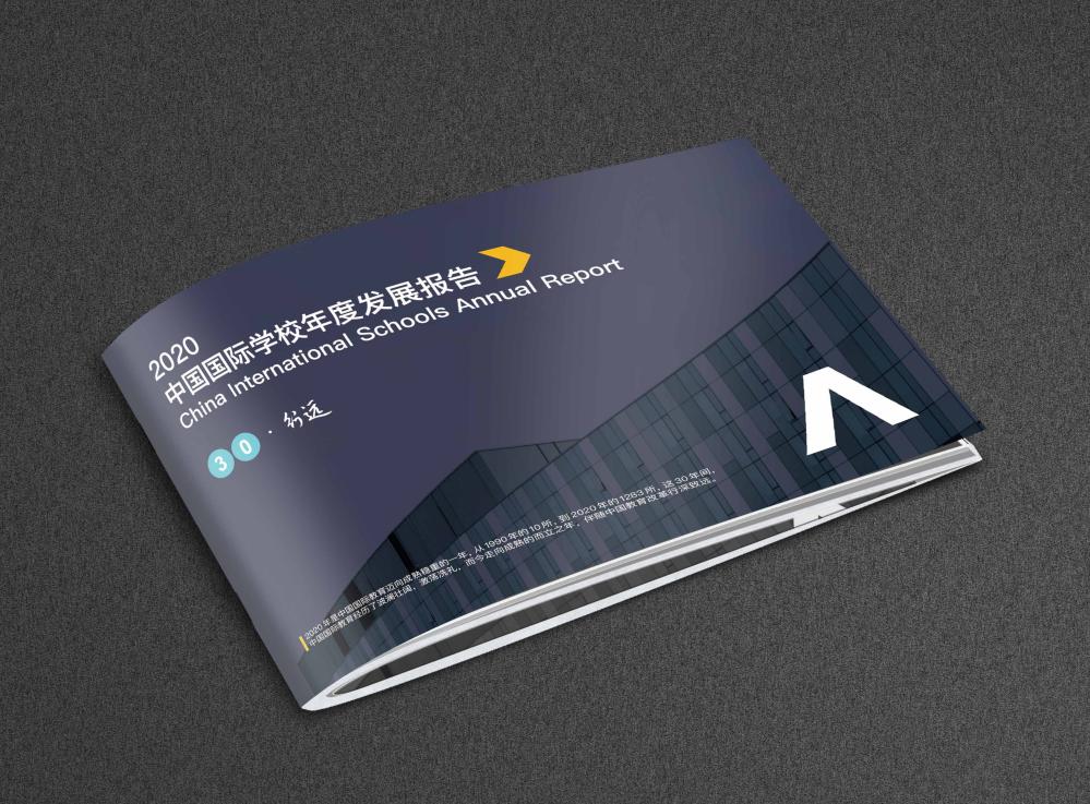2020年中国国际学校年度发展报告